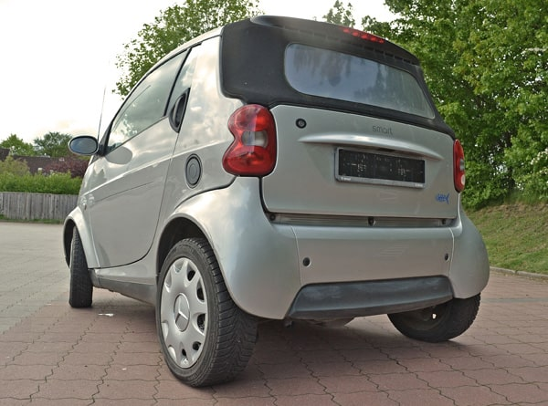 Smart-ForTwo-Frosch